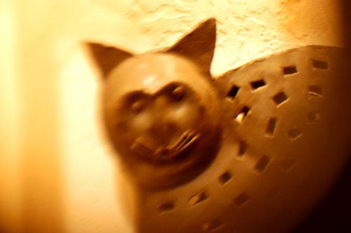 ブラックアイアンの猫