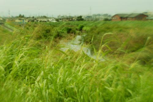 草/非球面レンズ