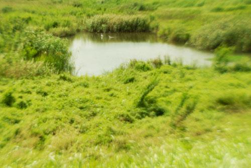これも川/非球面レンズ